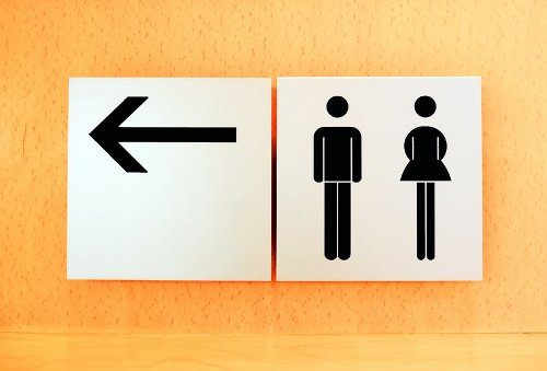 Rights to a Public Toilet