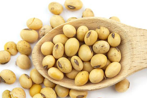 soybean for your beauty care