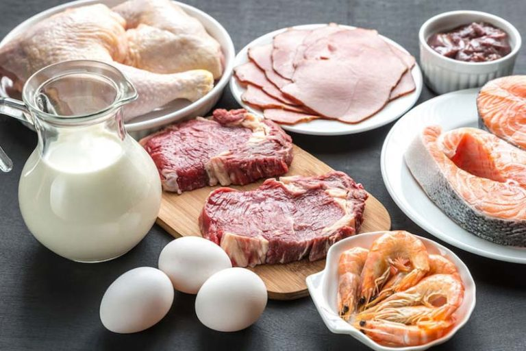 Why Do We Require Proteins, quick high protein breakfast, high protein breakfast no eggs, high protein breakfast bodybuilding, high protein low carb breakfast, high protein breakfast recipes for weight loss, high protein breakfast indian, Why Do We Require Proteinshigh protein breakfast foods list, protein foods for breakfast lunch and dinner, examples of protein foods, the chemical compounds that protein foods are made of are called, protein foods for breakfast, protein benefits,how much protein, protein foods list for weight loss, types of proteins to eat, what are simple proteins, types of proteins in food, types of proteins biology, types of protein structure, classification of proteins,how many types of proteins are there, names of proteins, 4 types of proteins, types of protein powder, what do proteins do,what are nucleic acids used for, proteins food, what are lipids used for, what are carbohydrates used for in the body,proteins structure, types of proteins, what are fats used for, proteins food, proteins structure, what is protein used for, what does amino acid mean, types of proteins, how can you assist children in enjoying mealtimes?,Why Do We Require Proteins, what is protein good for, proteins definition, why do we need fats, why do we need carbohydrates, why do we need vitamins,why do we need dairy, why do we need protein after a workout, what happens if we don't get enough protein, why do we need lipids, why do we need protein for kids,