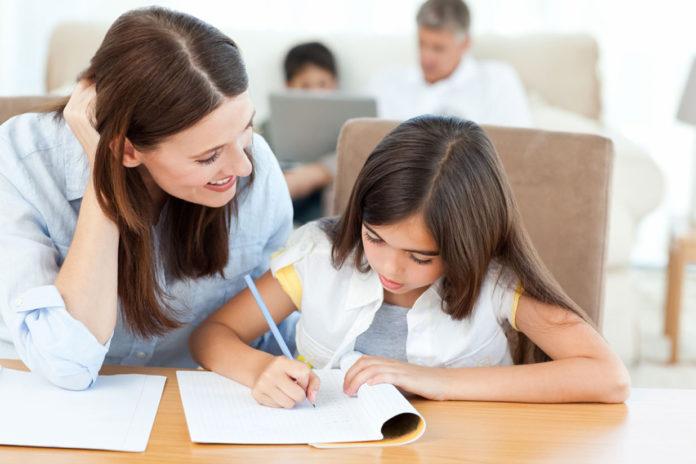 Homework Help - An Intelligent Online Educational cost