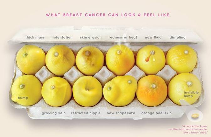 Breast Cancer Indicators explained through Lemons