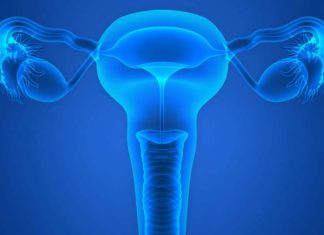 Making artificial ovaries, artificial ovary matures human eggs, artificial human ovary, synthetic ovary, 3d printed ovary, artificial uterus,