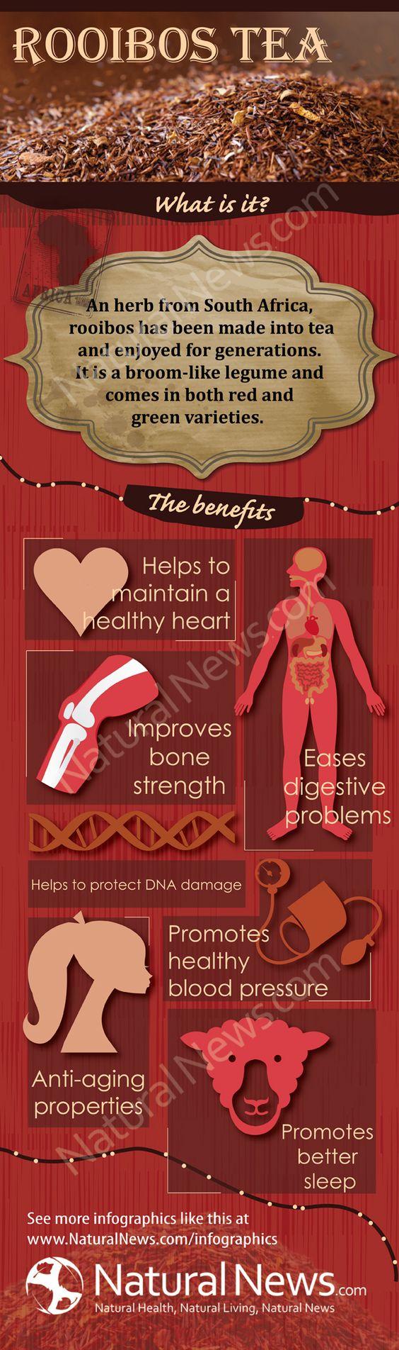 Rooibos Tea and its Health Benefits