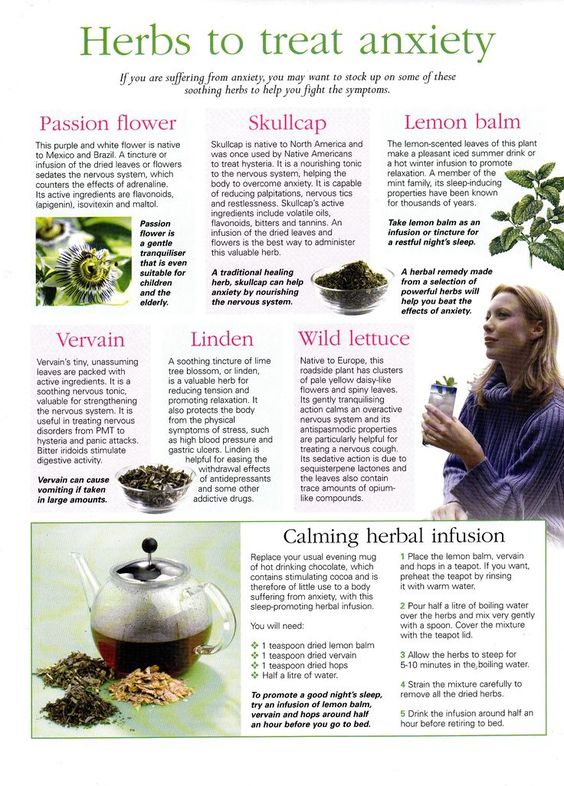 Herbal Remedies to Calm Anxiety