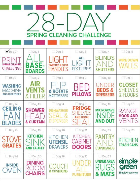 28 - day spring cleaning challenge