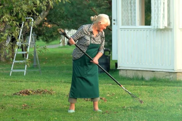 Is Gardening Good Exercise?, is weeding good exercise, gardening exercise tips, what type of exercise is gardening, gardening exercise calories burned, exercise while gardening, does gardening keep you fit, is digging good exercise, fitness the dynamic gardening way,