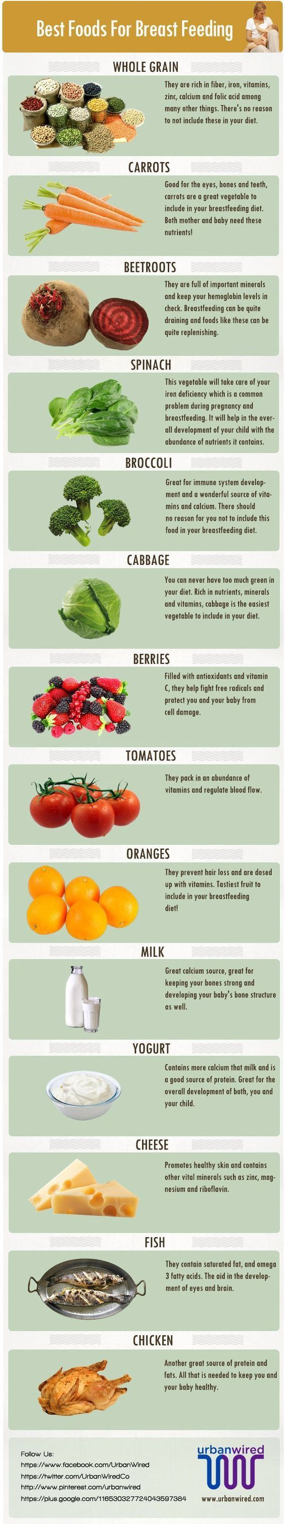 best foods for breast feeding