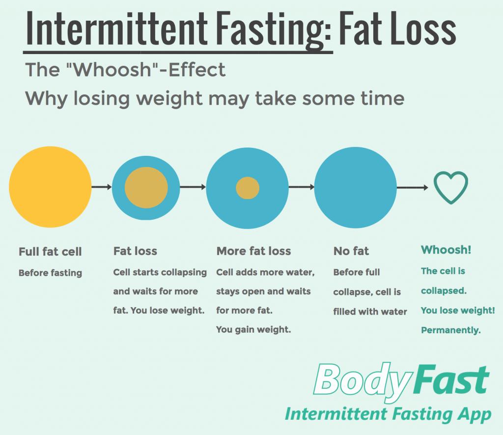 Intermittent Fasting Fat loss