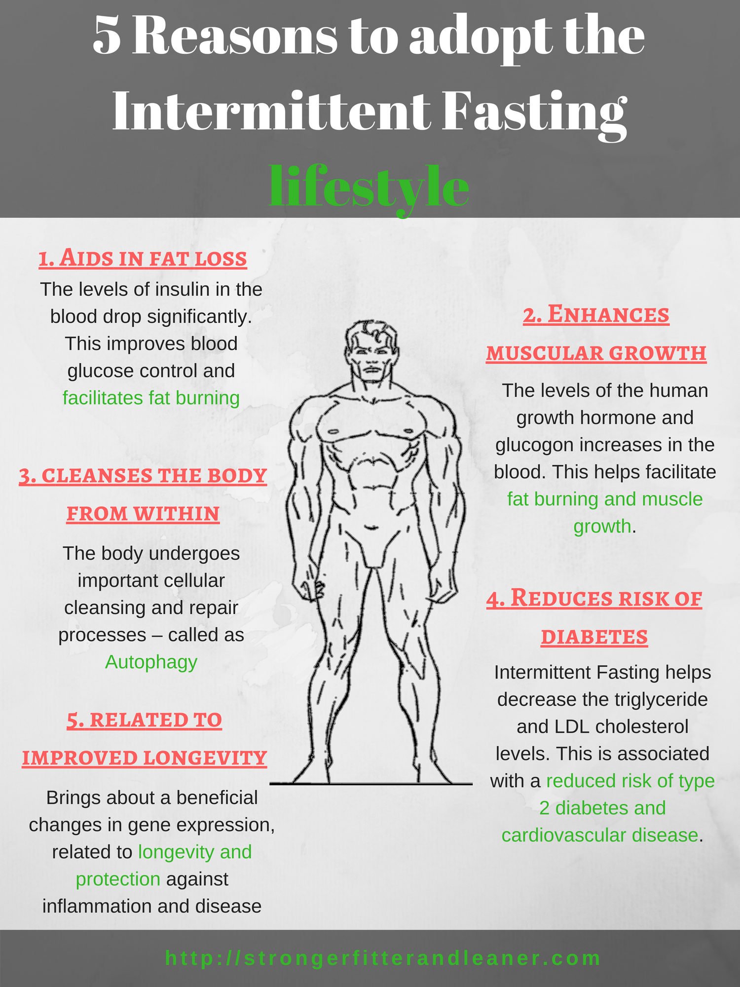 Reasons to adopt Intermittent Fasting