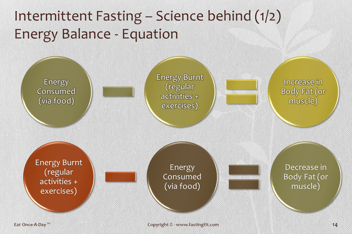 Science behind Intermittent Fasting