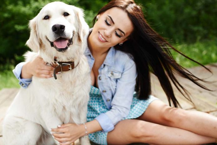 6 Compelling Reasons to become a pet sitter
