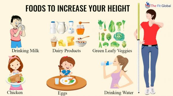 Foods to increase your height