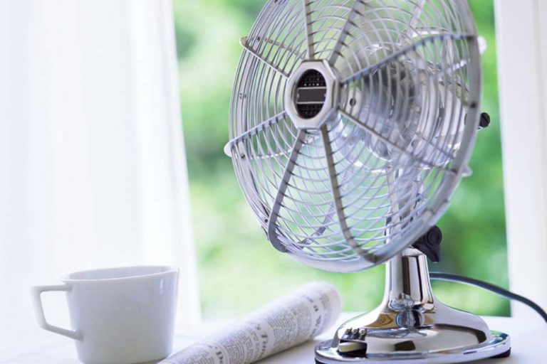 How to Make Indoor Air Clean and Fresh