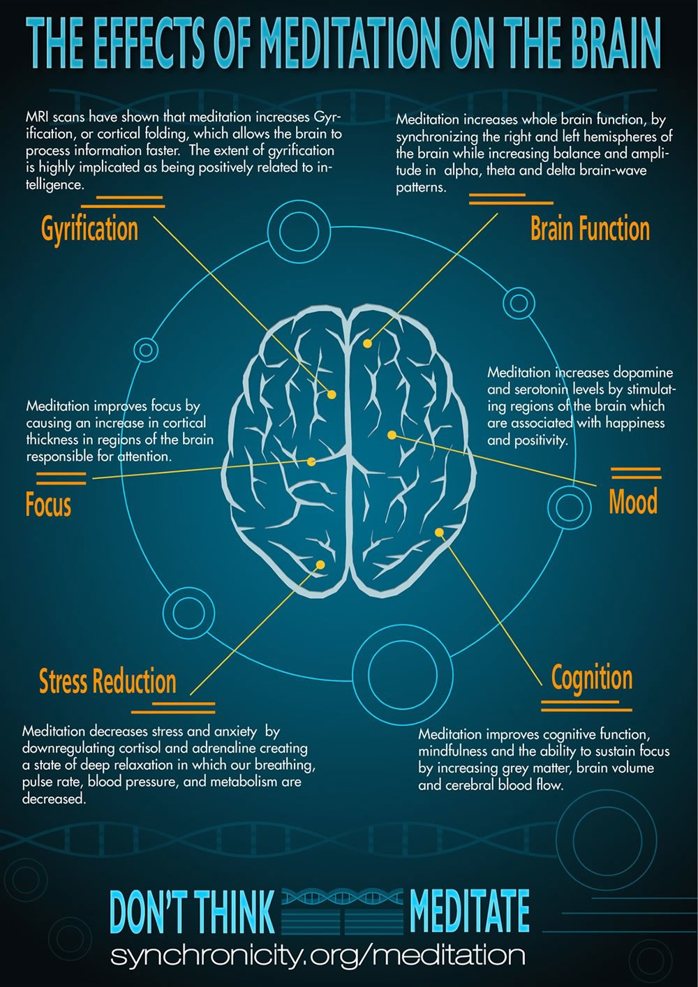 Effects of Meditation on the Brain