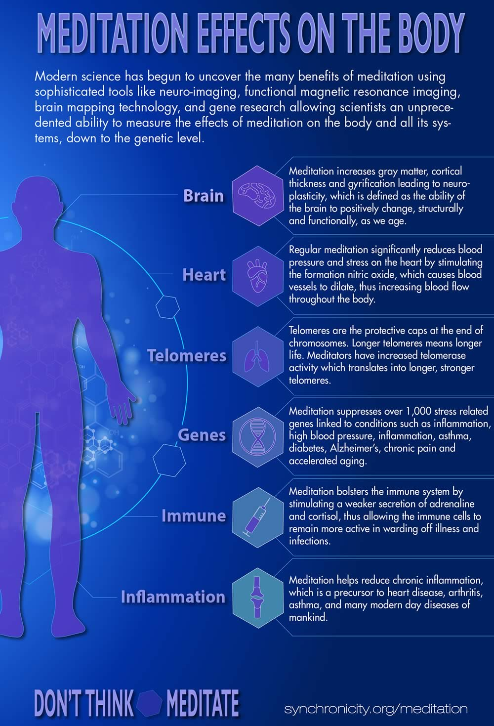 Meditation effects on the body