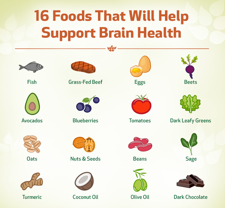 Foods that will help support Brain health