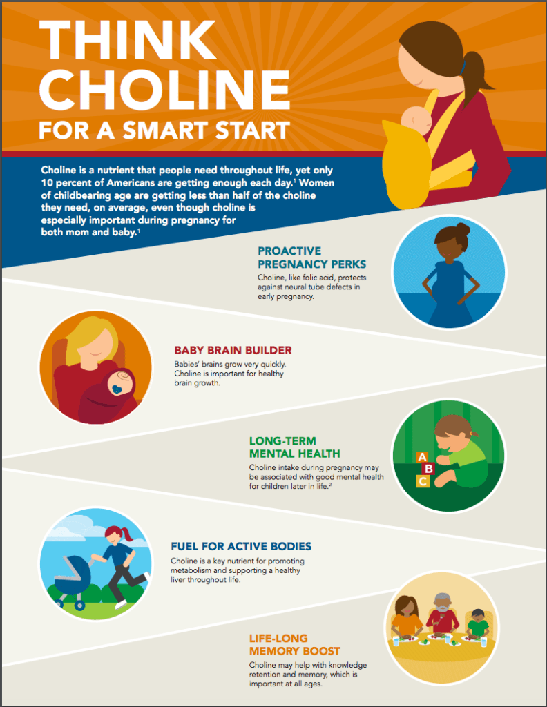 Choline for smart Pregnancy