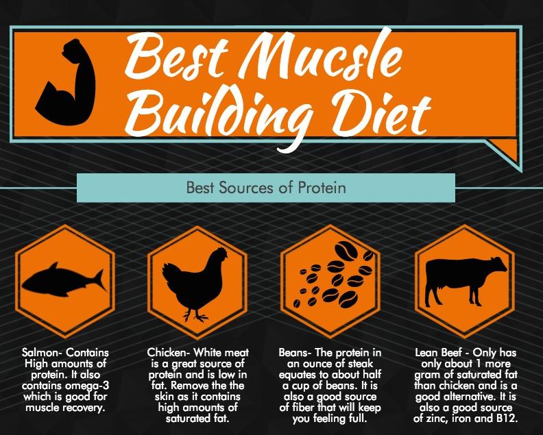 Best Muscle Building Diet