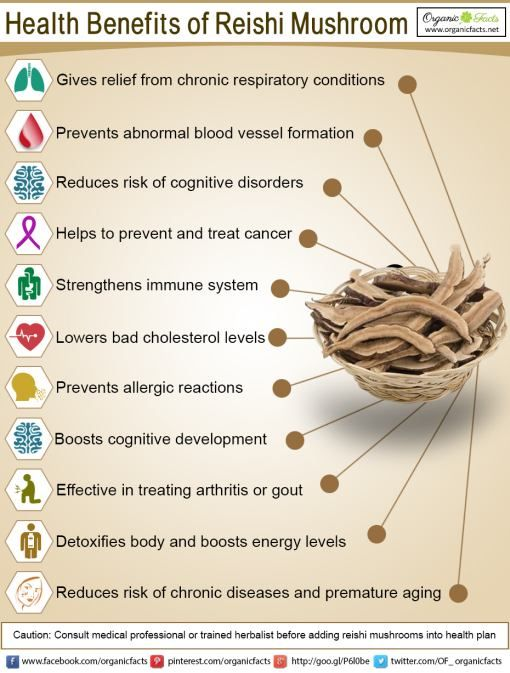 Health Benefits of Reishi Mushrooms