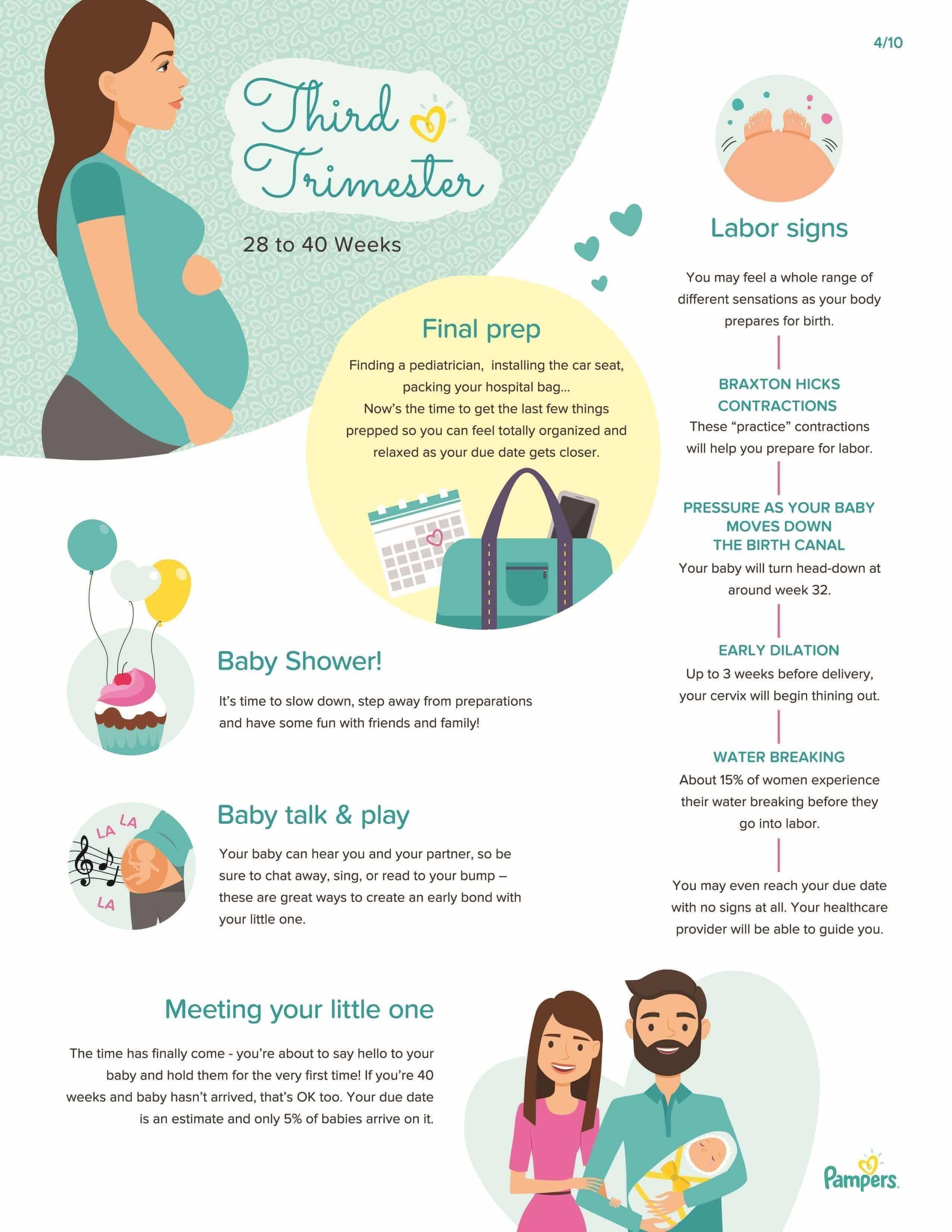 Third Trimester Pregnancy
