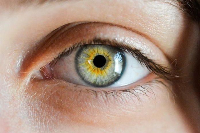 The 5 Secrets to Better Eyesight