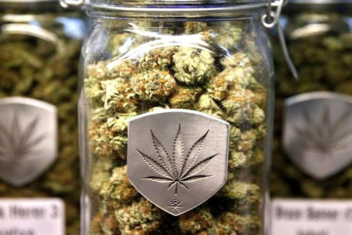 Best Weed Shopping Tips To Follow While Traveling