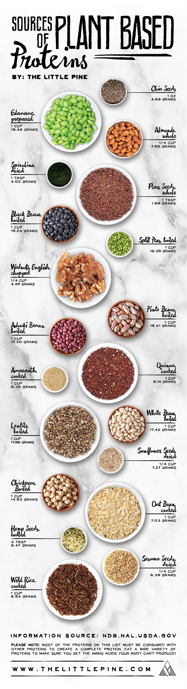 Sources of Plant Based Proteins