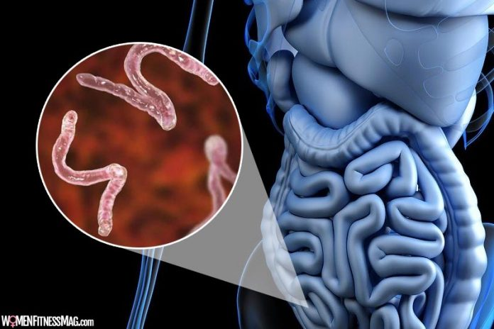 This Is How to Cleanse Your Body of Parasites