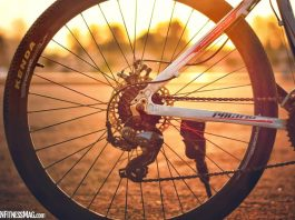 Bicycle Bearing: What Is It? And How To Maintain Them?