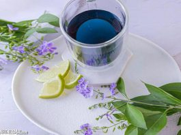 The Remarkable Anti-Ageing Properties of Butterfly Pea Flower Tea