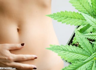 The Second Brain: Examining the Link Between CBD and Gut Health