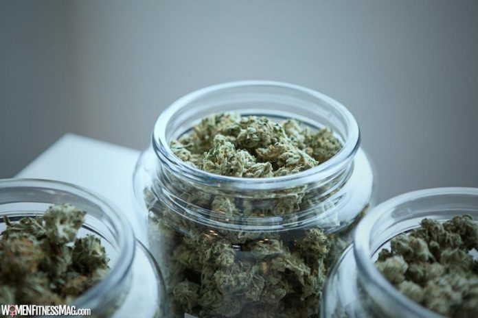 10 Things That You Should Order From Weed Delivery Services in Surrey