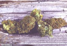 Can CBD Flowers Help Reduce Pain and Inflammation?