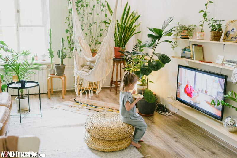 Appreciating Nature Using Houseplants