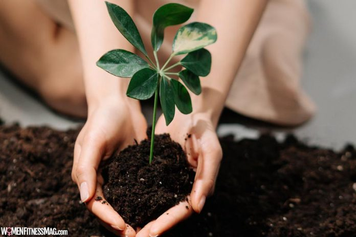 Composting Is The Way to Live a Cheaper and More Sustainable Life