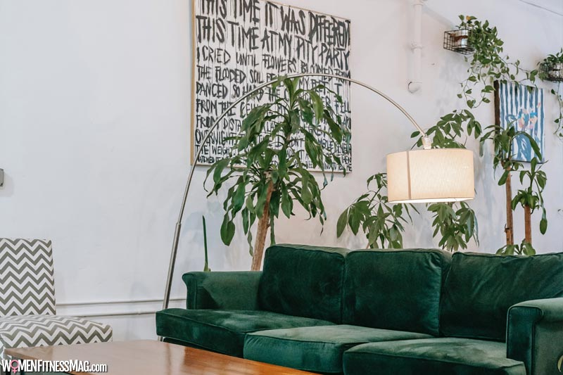 Add plants to any space of your house
